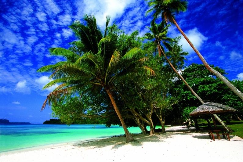 The Pacific S Best Islands And Beaches: Vanuatu Adventure